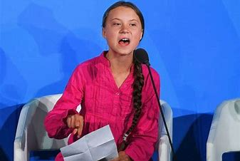 Image result for images of greta thunberg