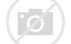 Image result for images of quokkas and christmas