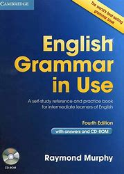 Image result for grammar in use