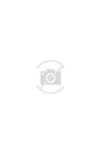 Image result for the look alike erica spindler