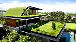"Image result for image of a ""green""  roof"