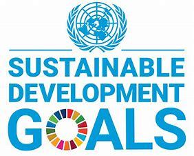 Afbeeldingsresultaten voor un sustainable development goals