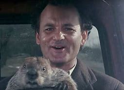 Image result for groundhog day images