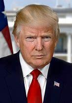 Image result for formal portrait donald trump