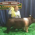 Floyd County Schools 4-Hers win big at livestock show