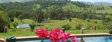 Manning Valley Property & Livestock | 7 Inala Close, Taree, NSW 2430 | +61 2 6552 1132
