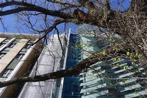 Bio21 Molecular Science & Biotechnology Institute | 30 Flemington Road, Parkville, Victoria 3010 | +61 3 8344 2220