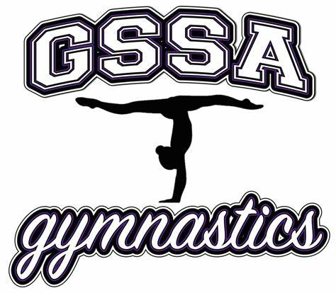 Greater Sydney Sports Academy Gymnastics | 100 Argyle Street, South Windsor, New South Wales 2756 | +61 2 4577 8789