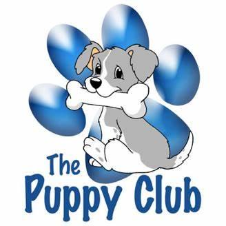 The Puppy Club & Puppy School Falkirk | 33 Castle Road, Falkirk FK2 7UY | +44 7752 526030