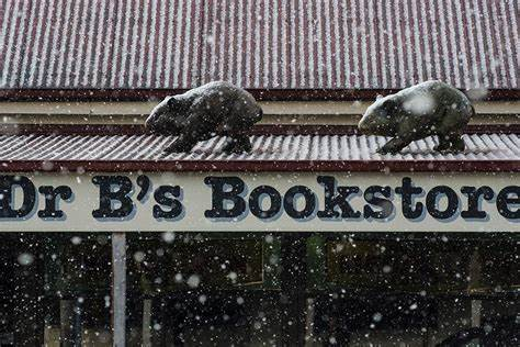 Dr Bs Bookstore - Reading And Writing Elixirs | 40 High Street, Trentham, Victoria 3458 | +61 421 225 999