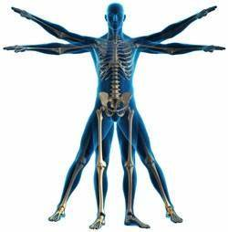McSorley Phsyio Therapy & Sport Injury Clinic   Unit 67 Armagh Business Centre 2 Loughgall Rd, Armagh BT61 7NH   +44 7595 359633