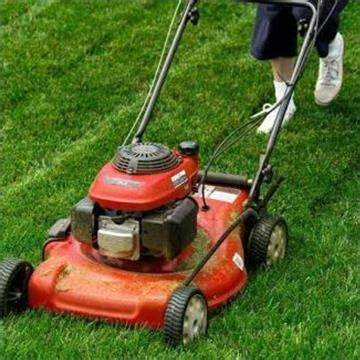 Smurphys Lawn care And Handyman Services | Beutel Street, Waterford, Queensland 4133 | +61 435 721 609