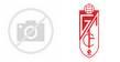 Logo of the Valencia CF