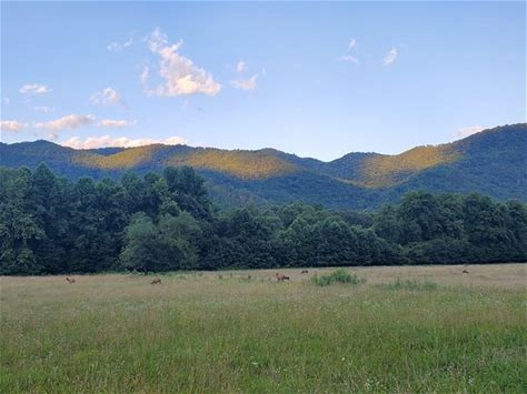 Learn more about Oconaluftee