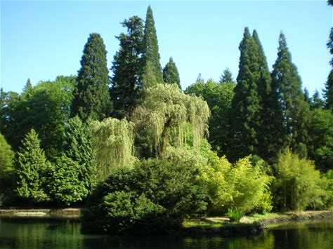 Learn more about Laurelhurst Park