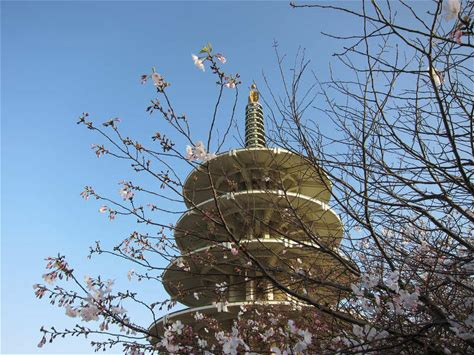 Learn more about Japantown