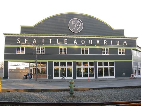 Learn more about Seattle Aquarium