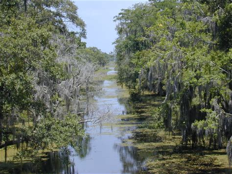 Learn more about Jean Lafitte National Historical Park and Preserve