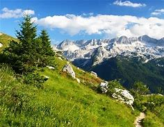 Image result for Skiing within the Swiss Alps