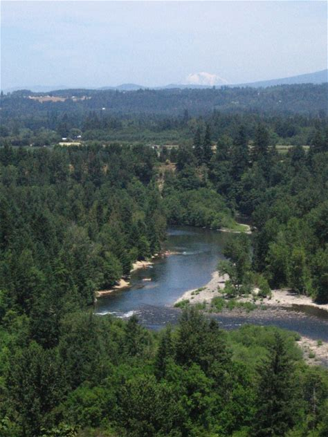 Learn more about Milo McIver State Park