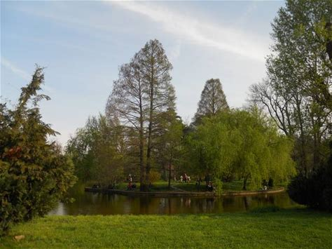 Learn more about Bucharest Botanical Garden