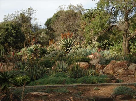 Learn more about Walter Sisulu National Botanical Garden