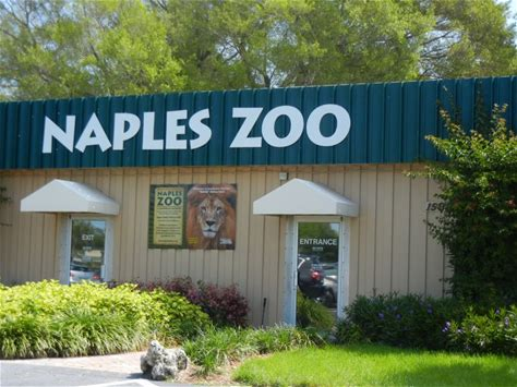 Learn more about Naples Zoo