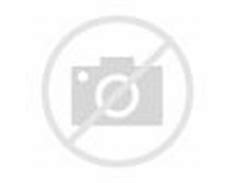 Image result for patrick soon-shiong
