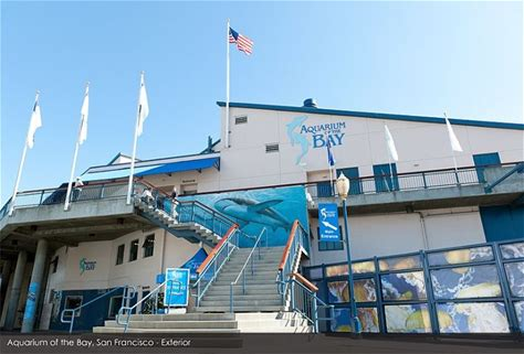 Learn more about Aquarium of the Bay