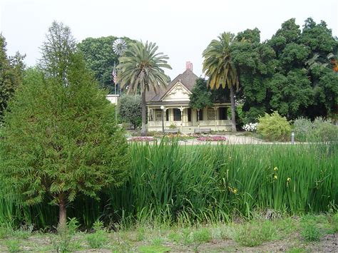 Learn more about Fullerton Arboretum