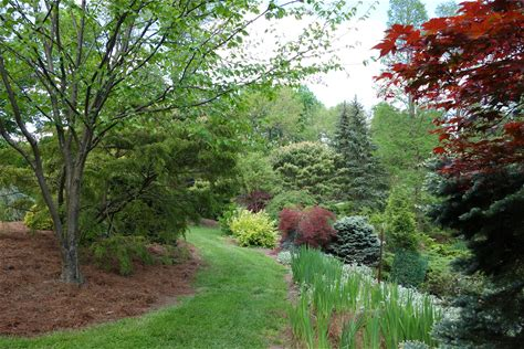 Learn more about Mount Airy Arboretum