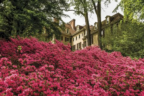 Learn more about Winterthur Museum, Garden and Library