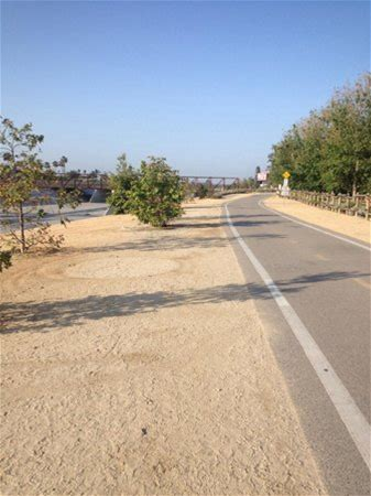 Learn more about Santa Ana River Trail