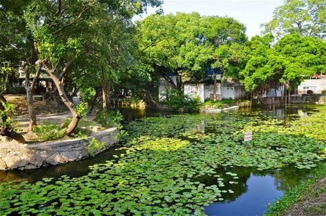 Learn more about Zhongshan Park