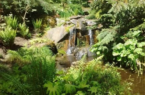 Learn more about Bellevue Botanical Garden