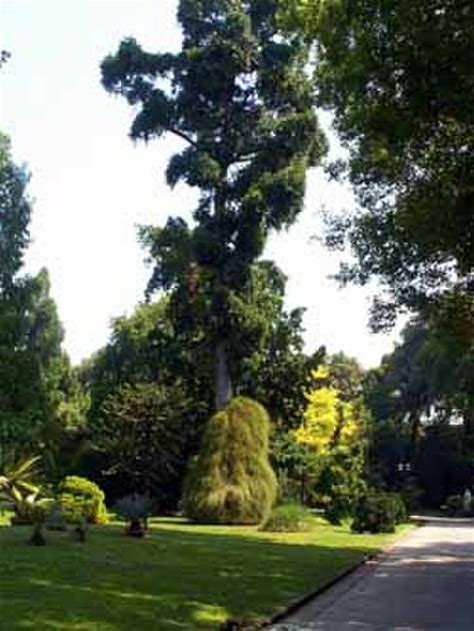 Learn more about Botanical Garden of Naples