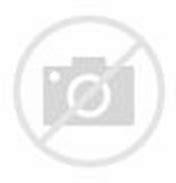 Image result for LA Dodgers
