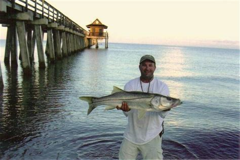 Learn more about Naples Fishing Charters
