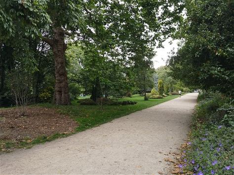 Learn more about Merrion Square