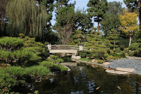 Learn more about Earl Burns Miller Japanese Garden