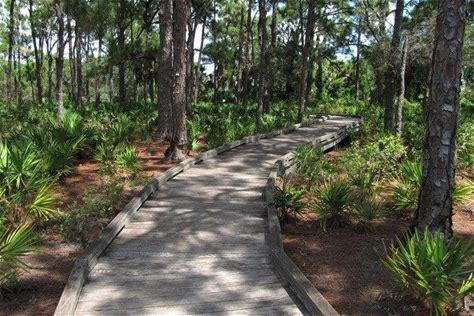 Learn more about The Naples Preserve