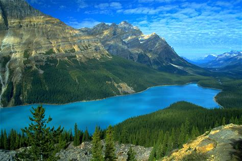 Learn more about Peyto Lake