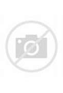 Image result for Bridget of Sweden