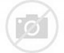 Image result for asheville tourists