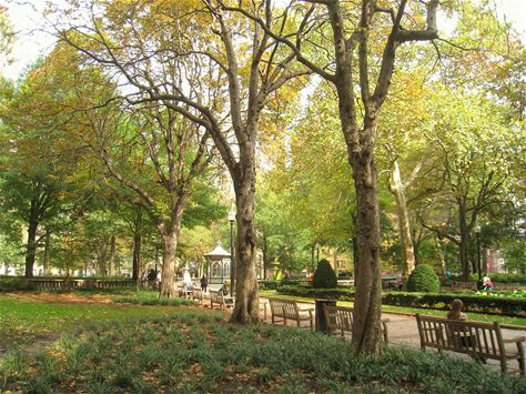 Learn more about Rittenhouse Square