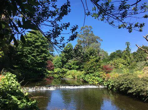 Mount Usher Gardens | Mount Usher, Ashford | +353 404 40205