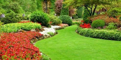 Serenity Lawn Care Service Boise Idaho | 2560 N Five Mile Rd, Boise, ID, 83713 | +1 (208) 230-1199