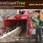 Image result for first coast tree. Size: 89 x 89. Source: dm1files.storage.live.com