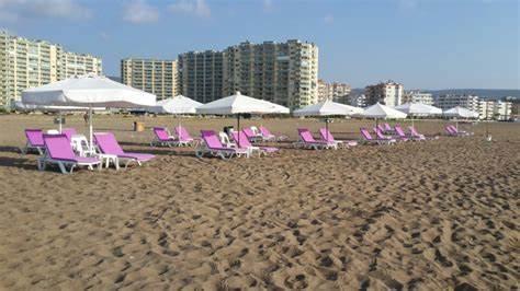 Şahin Beach   Flamingo 7 Tatil Köyü Önü, Silifke/Mersin   +90 506 613 30 22