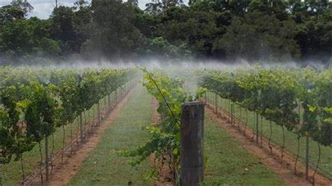 Manning Valley Pumps And Irrigation | 8 ISABELLA Street, Wingham, New South Wales 2429 | +61 2 6553 0224